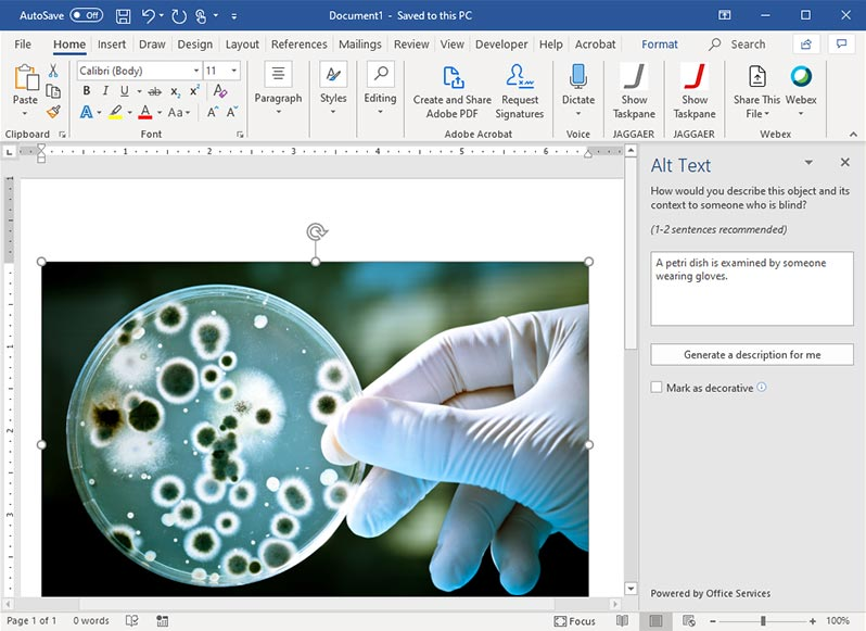 Screenshot of an image an alt text field in Word.