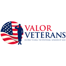 Valor Veterans Helping To Heal The Emotional Wounds of War Logo