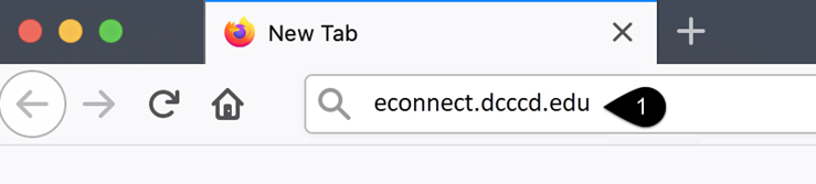 Screenshot of the address bar of a web browser with econnect.dcccd.edu entered.